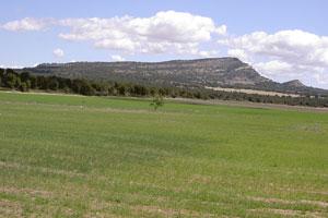 Ruta del vino de Yecla - vinos de España - enoturismo en Murcia