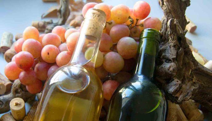 ¿Qué es la acidez de los vinos? - fase de degustacion de la cata de vinos