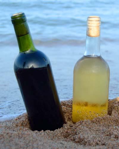 Cuáles son los sabores principales de los vinos - fase de degustación de la cata de vinos