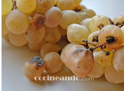 Qué son los vinos de podedumbre noble o vinos botritizados y cómo se elaboran