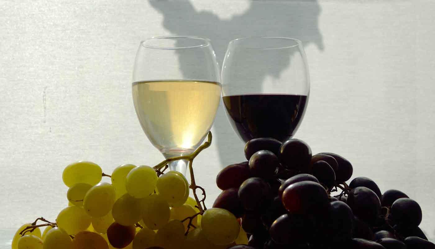 ¿Cómo se elaboran los vinos sin alcohol? - tipos de vinos