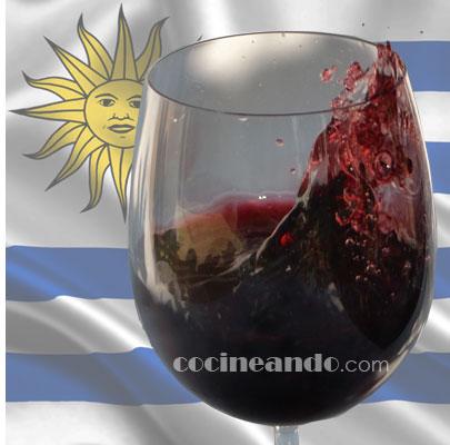 Principales uvas y características de los vinos uruguayos - vinos del mundo