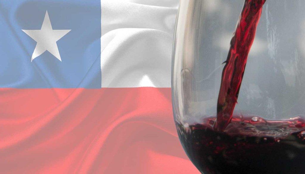 Vinco de Chile: carcacterísticas, variedades de uvas y tipos de vinos chilenos