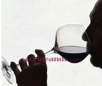 Vocabulario para describir los sabores del vino - fase de degustación de la cata de vinos