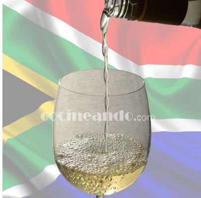 Principales uvas y características de los vinos sudafricanos - vinos del mundo