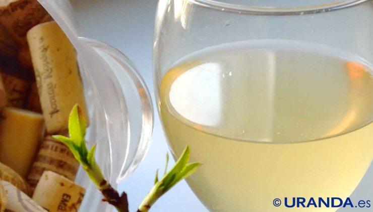 Chenin blanc: características de la uva y sus vinos -* diccionario de uvas para vinos