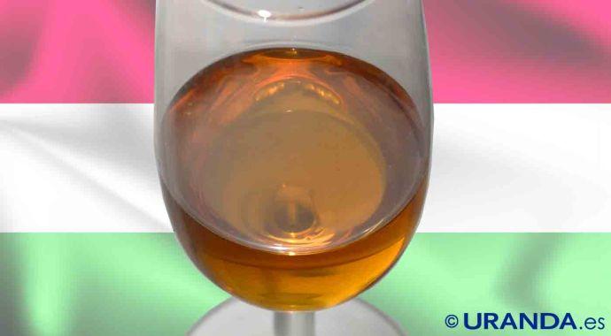 Vinos de Hungría: características, uvas y zonas geograficas