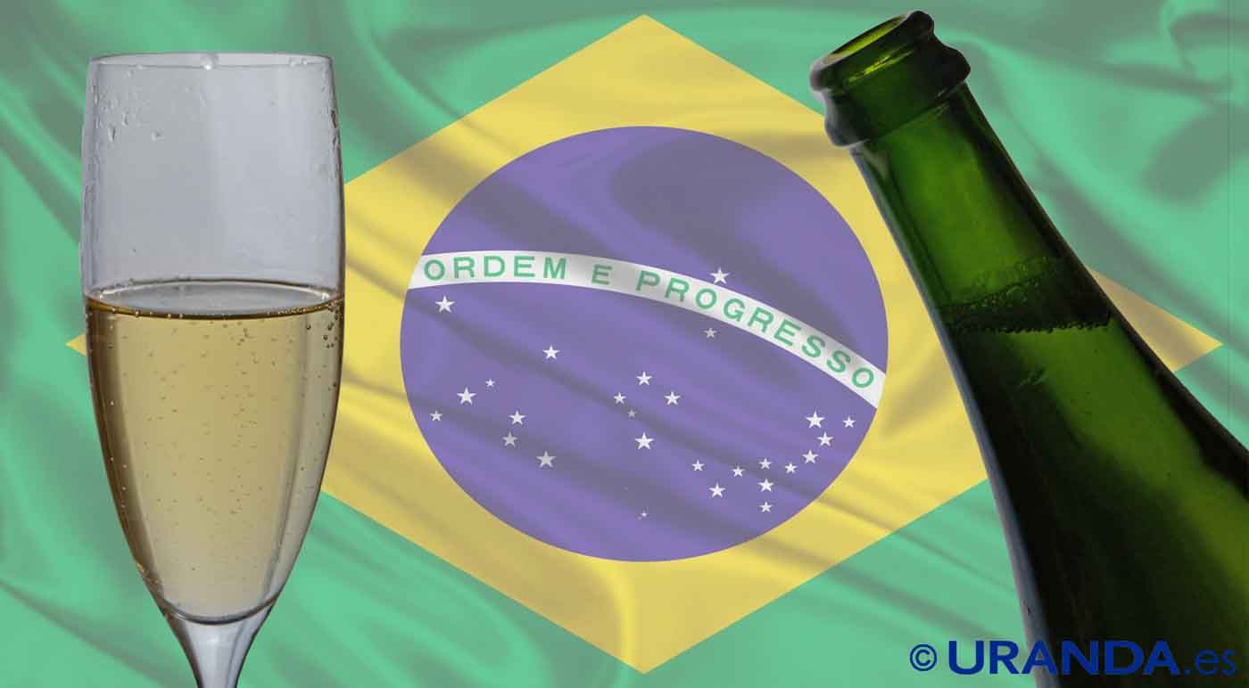 Vinos de Brasil: características y uvas