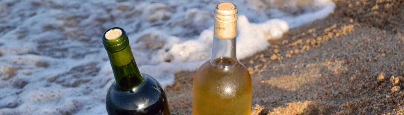 Zona de vinos, magazine de vinos y enoturismo