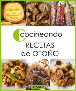 Cocineando Recetas de Otoño - libros ebooks de cocina gratuito en PDF